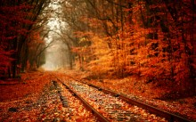 fall railroad